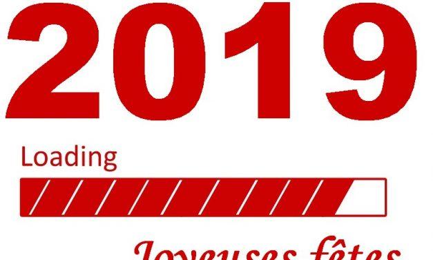 Une année 2018 riche en concrétisations,  une année 2019 numérique, smart et collective